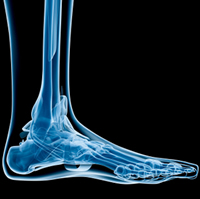 Common foot and ankle disorders